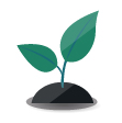 icon of a plant sprouting from soil