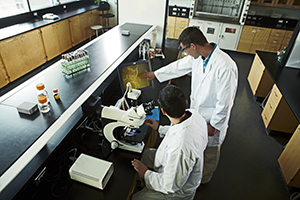 Two student in the biological science program using a microscope in a laboratory