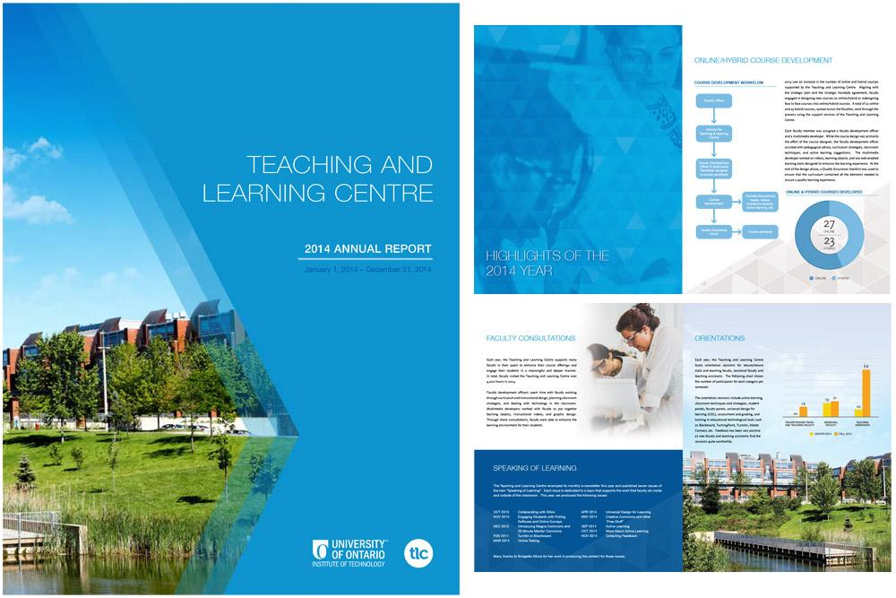 Teaching and Learning Centre Annual Report