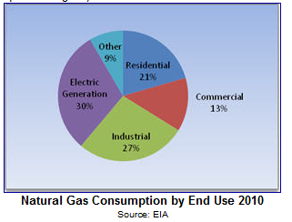US Natural Gas Consumption by End Use 2010
